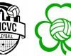 DMCVC Logo and Shamrock